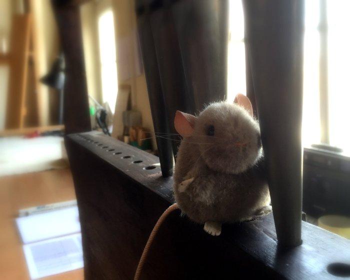 Stück für Stück erkundete Maus die Orgel, die in der Werkstatt restauriert wurde. (Foto: Anja M. Pietzsch)